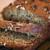 Resep Kue Bolu Pisang Panggang Nikmat