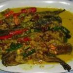 Cara Membuat Ikan Lele Santan Pedas Gurih dan Nikmat